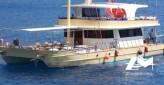 Catamaran à moteurs de 20 x 8 m année 2016 pour les excursions Daily animation réceptif