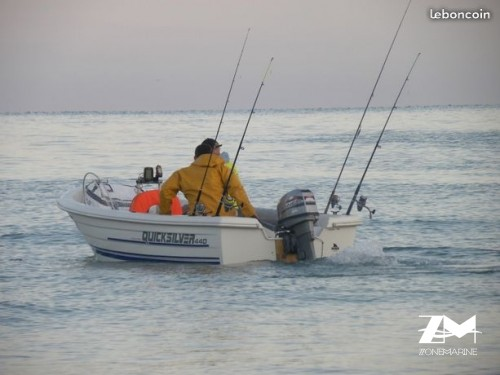 Quicksilver 440 Fish